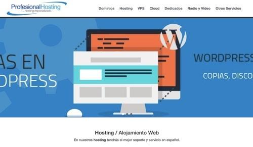 Alojamiento web Profesional